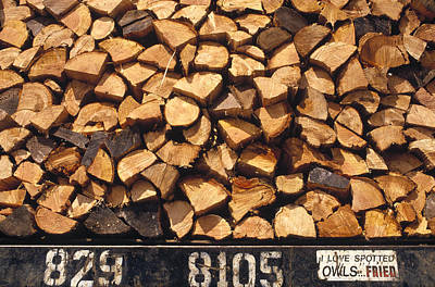 Firewood Hauled From Clearcut On Truck Art Print
