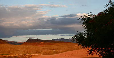 First Desert Light Art Print