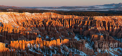 Photograph - First Light At Bryce Canyon by Sandra Bronstein