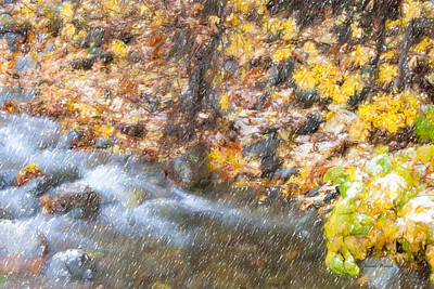 Photograph - First Snow by Ramona Murdock