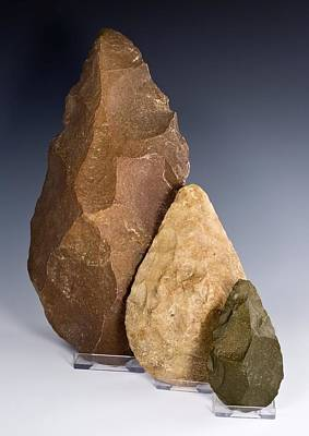 Handaxe Photograph - First Tools, Three North African Handaxes by Paul D Stewart