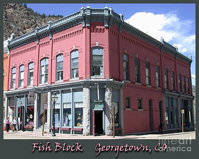 Bringing The Outdoors In - Fish Block Georgetown Colorado by Tim Mulina