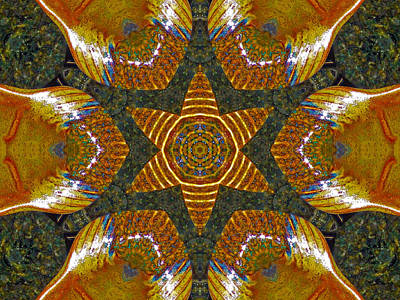 Photograph - Fish Bowl Kaleidoscope by Bill Barber