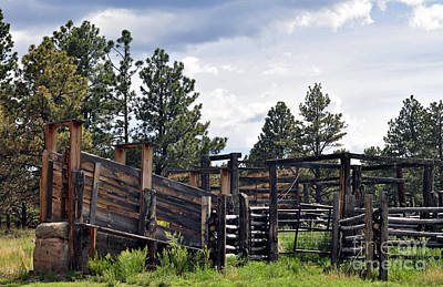 Cattle Chute Photograph - Fish Creek Corral  by Juls Adams