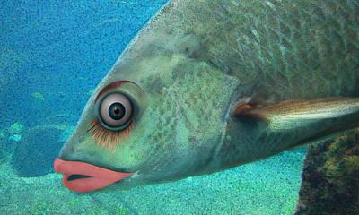 Fish Seeking Fish  Art Print