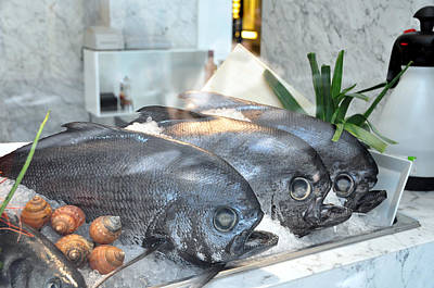 Photograph - Fish Store Window by Allan Rothman
