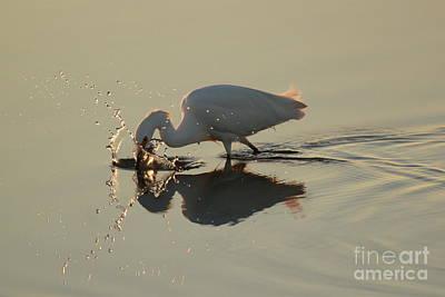 Photograph - Fishing by Adam Jewell