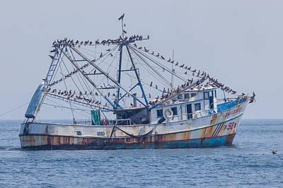Fishing Boat With Birds Art Print