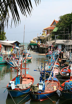 Habor Photograph - Fishing Boats by Adrian Evans