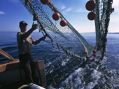 Mbl Photograph - Fishing For Scientific Specimens by Volker Steger