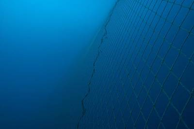 Netting Photograph - Fishing Net Underwater by Angel Fitor