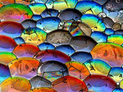 Photograph - Fishy Bubbles by Jean Noren