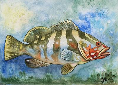 Painting - Fishy Fishy by Karen Casciani