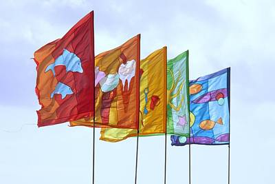 Photograph - Flags by Ed Lukas
