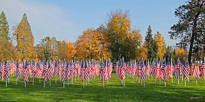 Photograph - Flags Of Honor by Mick Anderson