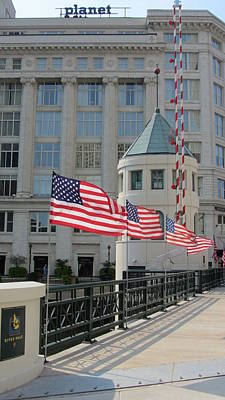Photograph - Flags On The Avenue by Anita Burgermeister