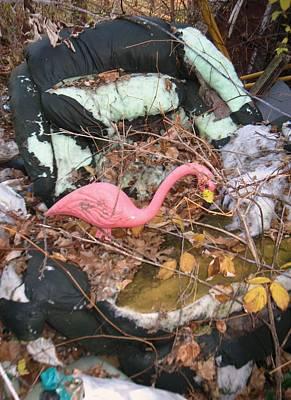 Photograph - Flamingo Recliner by Todd Sherlock