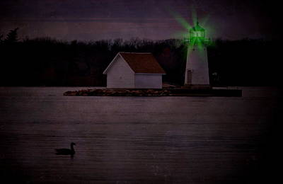 Photograph - Flash Of Green by Emily Stauring