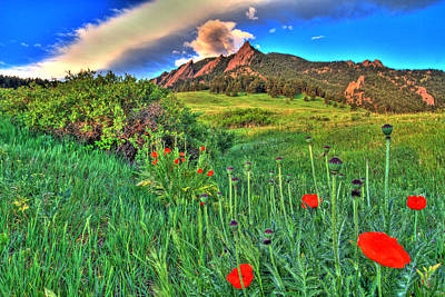 Railroad - Flatirons and Poppies by Scott Mahon