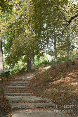 Photograph - Flight Of Steps In Parc Des Buttes-chaumont by Fabrizio Ruggeri