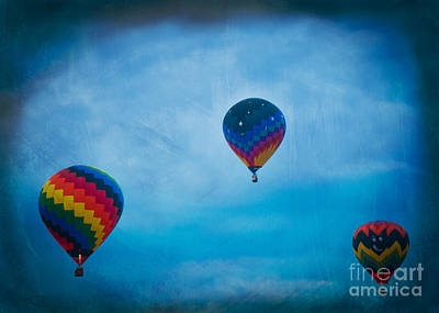 Photograph - Floating Along  by Alana Ranney