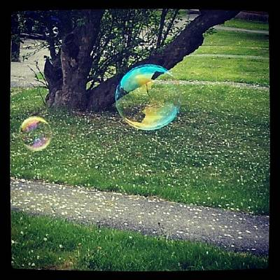 Colourful Wall Art - Photograph - Floating Bubbles. #bubbles #floating by Jess Gowan