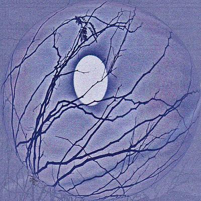 Floating  Egg  In  Las Vegas  January  Night  Sky Art Print