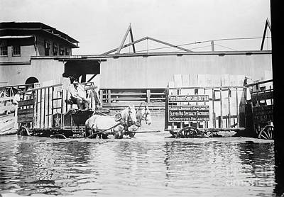 Flooding On The Mississippi River, 1909 Art Print by Library of Congress