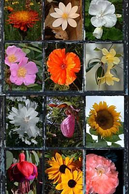 Photograph - Flora Just Another Flower Arrangement by William OBrien