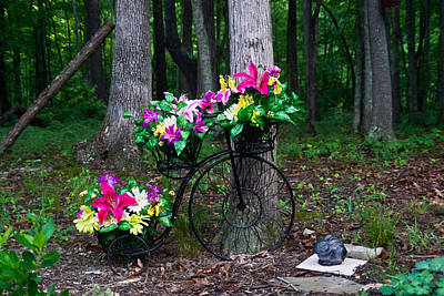 Floral Bicycle On A Cloudy Day Art Print