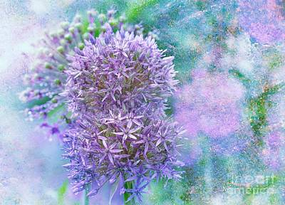 Onion Mixed Media - Floral Burst by Elaine Manley