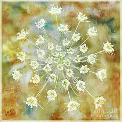 Photograph - Floral Fireworks by Diane Enright