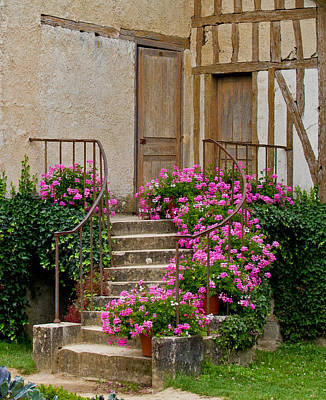 Photograph - Floral Stairs by David Freuthal