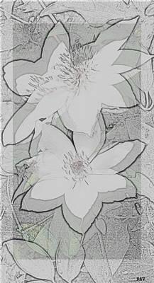 Fav Art Mixed Media - Floral Trace by Debra     Vatalaro