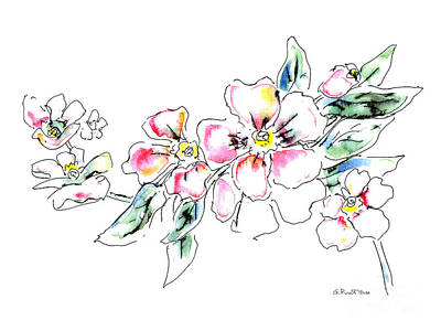 Floral Watercolor Drawings 5 Painting by Gordon Punt