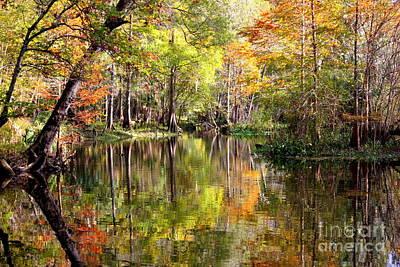 Photograph - Florida Autumn Secret by Carol Groenen