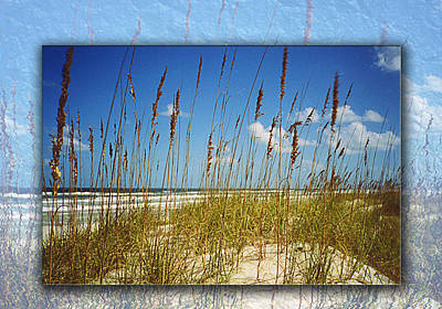 Perfect Day At A Florida Beach Art Print by Barbara Middleton