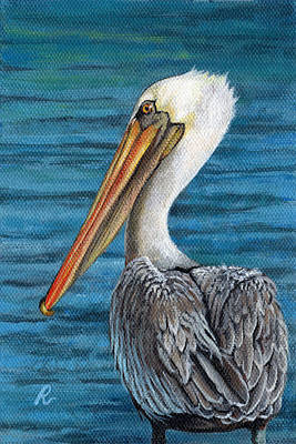 Painting - Florida Pelican by Peggy Dreher