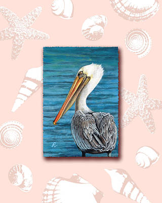 Florida Pelican With Seashell Border Art Print by Peggy Dreher