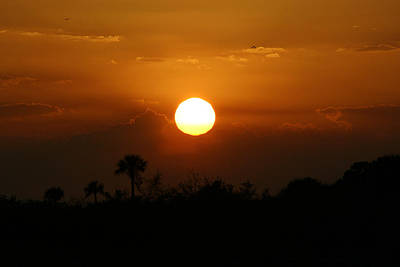 Photograph - Florida Sunset by Jeanne Andrews