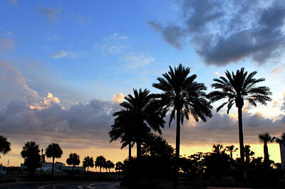 Photograph - Florida Sunset by Jeanne Kay Juhos