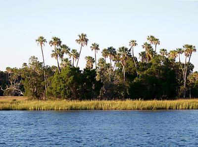 Photograph - Florida Waterscape by Judy Wanamaker