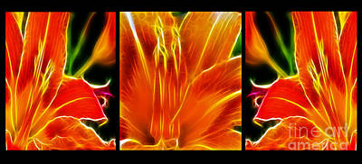 Tiger Lillies Photograph - Flower - Lillies - Abstract by Paul Ward