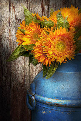 Flower - Sunflower - Country Sunshine Art Print