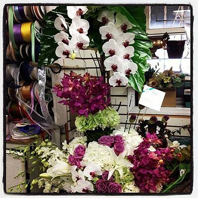 Orchids Photograph - #flower #arrangement #beautiful by Yiddy W