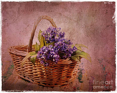 Photograph - Flower Basket by Judi Bagwell