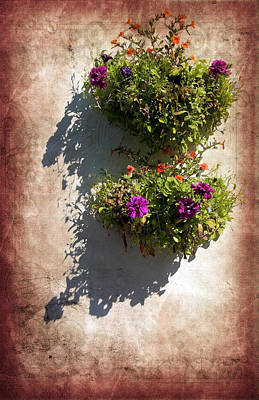 Flower Baskets Art Print by Svetlana Sewell