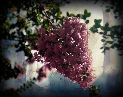 Hearts On Trees Digital Art - Flower Bud by Amanda Eberly-Kudamik