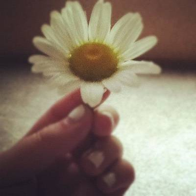 Skin Photograph - #flower #daisy #white #yellow #nails by Kayla St Pierre