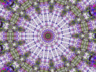 Digital Art - Flower Garden 2 by Rhonda Barrett